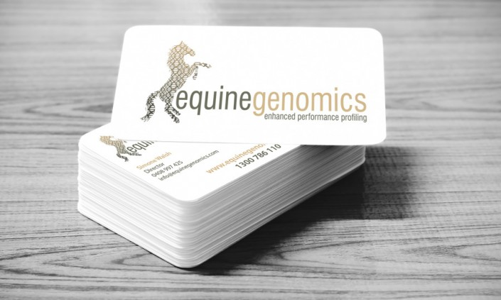 Equinegenomics Corporate Identity - Business Cards